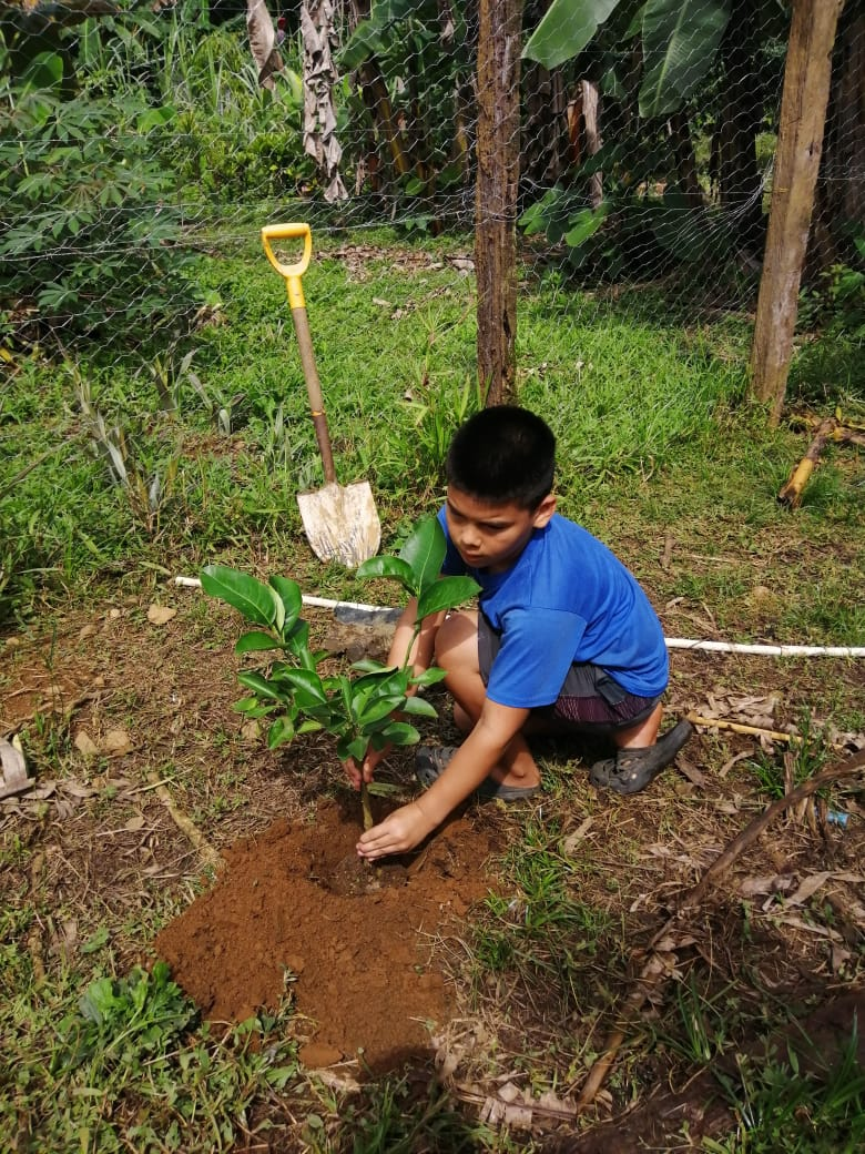 """""""The best time to plant a treewas 20years ago. The second-besttimeis now."""""""